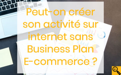 Un business plan e-commerce sinon rien